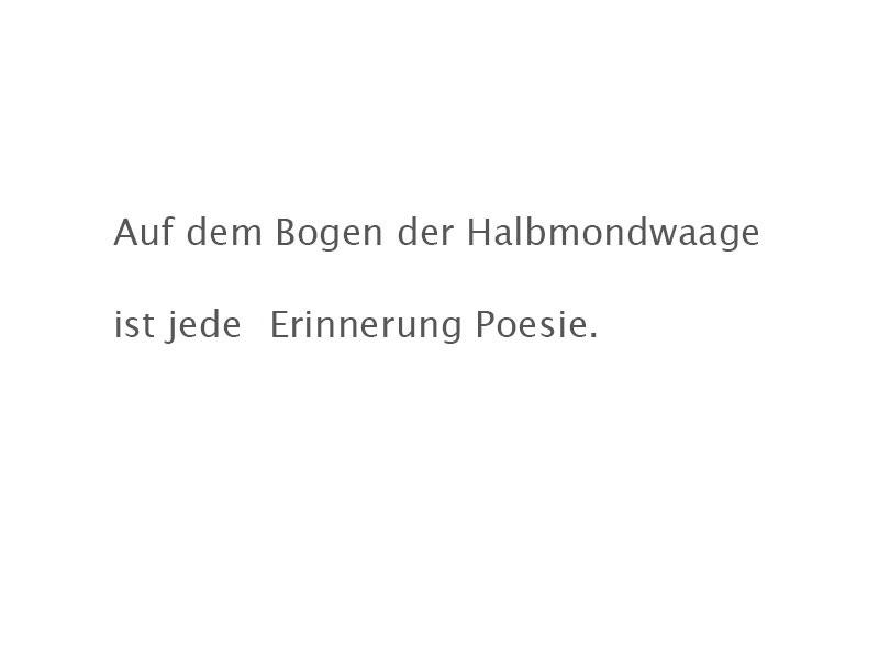 Poesie2