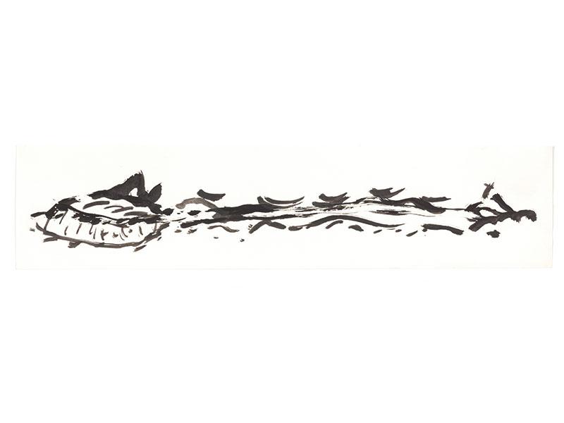 Zeichnung24